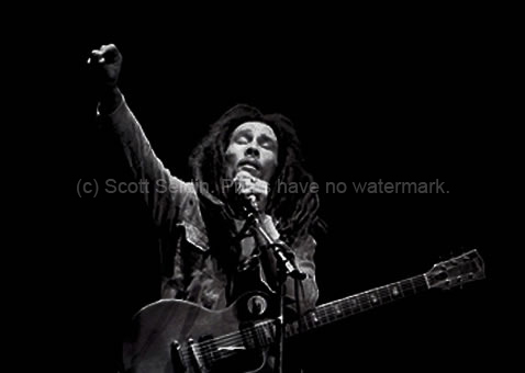 """Seldin writes: """"In 1980, when I photographed Bob Marley in Madison ..."""
